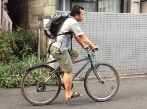Daily Transportation